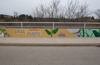 "Painted concrete bridge with yellow background and ""Local Endangered Plants"" written on it"