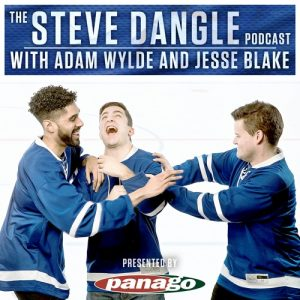 Cover of The Steve Dangle Podcast